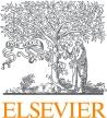 ELS_NS_Logo_2C_RGB (1)